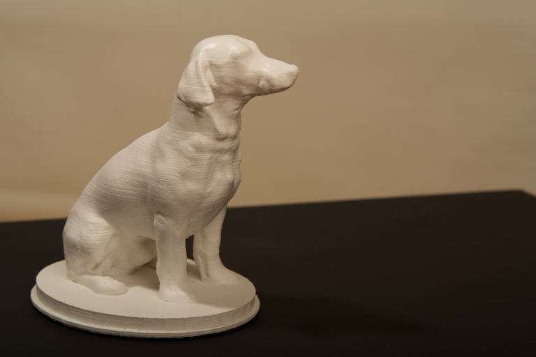 Dog 3D in progress